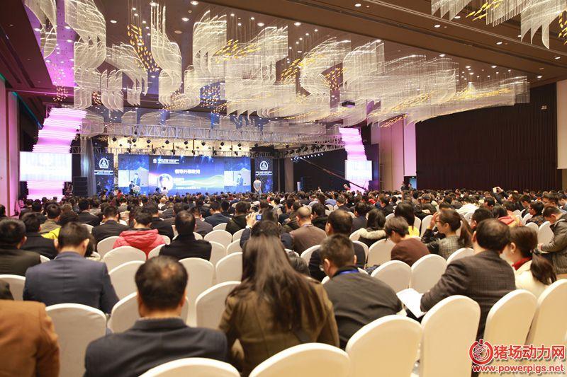 2017中国畜牧饲料经济与科技高层论坛在成都隆重开幕