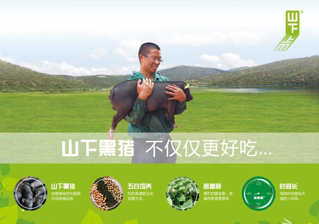 梦 想 ● 共 享——朱师傅致力于成为猪用预混饲料全球领先供应商