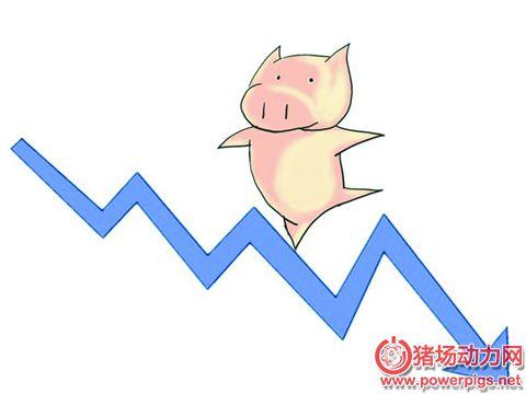 节日补货仍未启动 猪价继续下滑