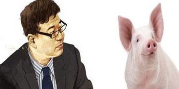 屠夫杀猪不成 反被猪拱坠而亡