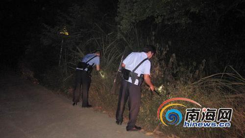 海南:野猪咬人致一死一伤 警方上山围捕