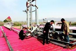 3500头生猪享受着太阳能热泵集中供暖的待遇 出栏周期缩短