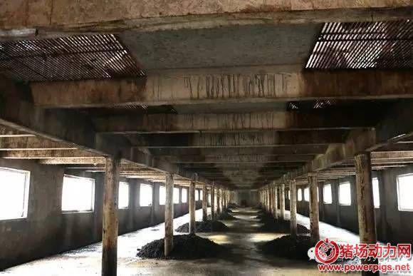猪场排挤的水可以照镜子,粪肥收入700万,养猪资本还低至5.5元/斤……千赢国际老虎机首存优惠100%