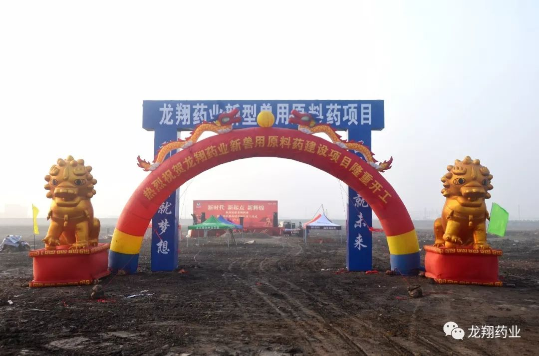湖北龙翔药业新兽用原料药建设项目正式开工