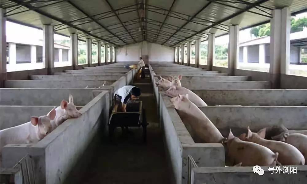 浏阳河沿岸500—1000米范围内养殖退出工作,补贴看这里