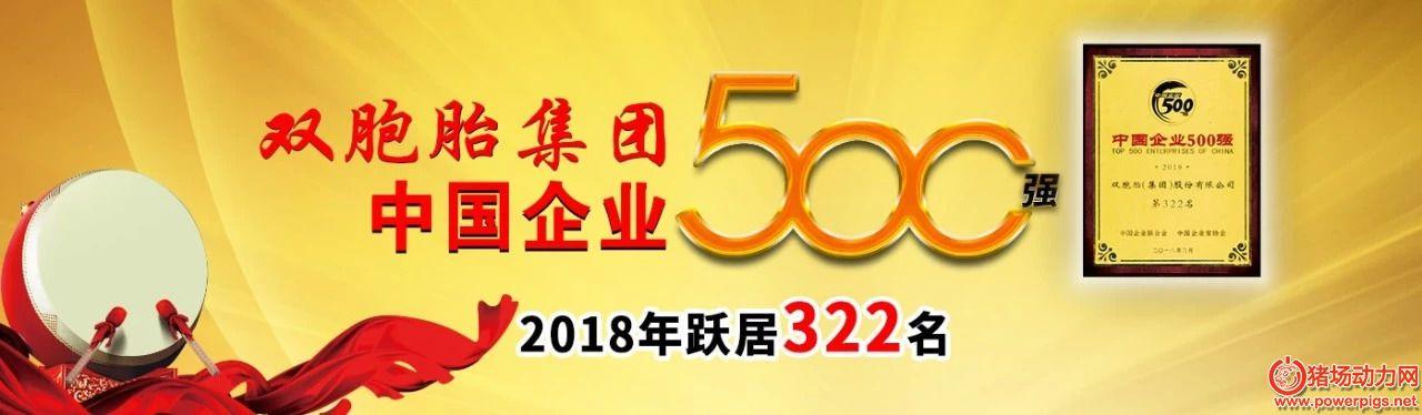 双胞胎强悍!2018中国500强企业排名上升25位,跃居322名
