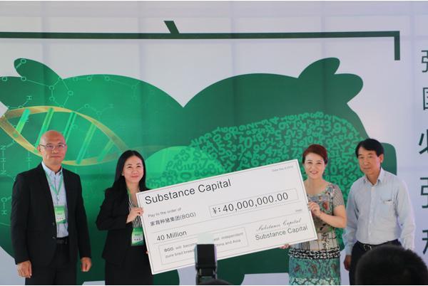 赤峰家育种猪:4000万融资,资本与养殖结合的典范之作