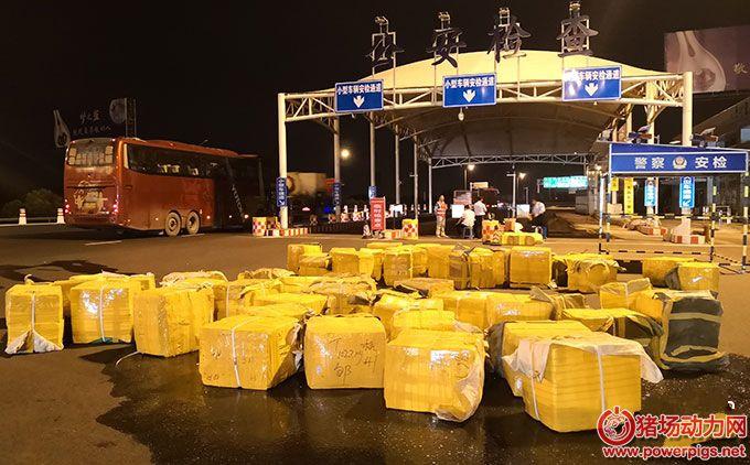 大客车行李箱内飘出肉腥味 原是装了近58箱2.5吨生猪肉(图)