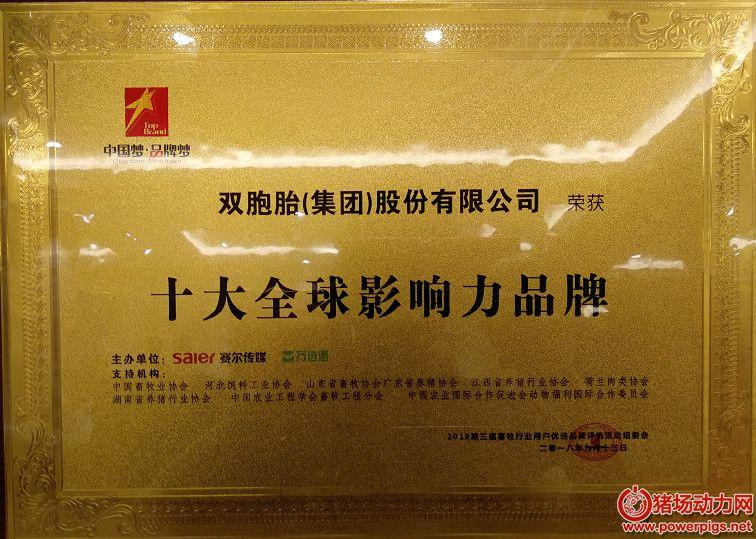 """双胞胎集团荣获""""十大全球影响力品牌""""等两项大奖"""