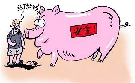 中国太保签出首单全国生猪饲料成本价格保险