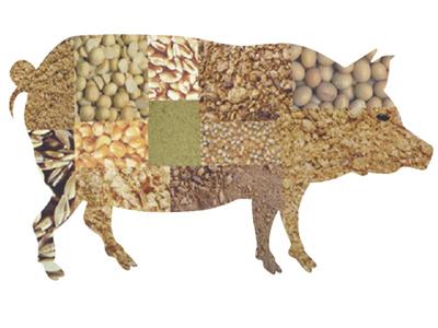美国农业部:上周美国对中国大陆装运857吨大豆