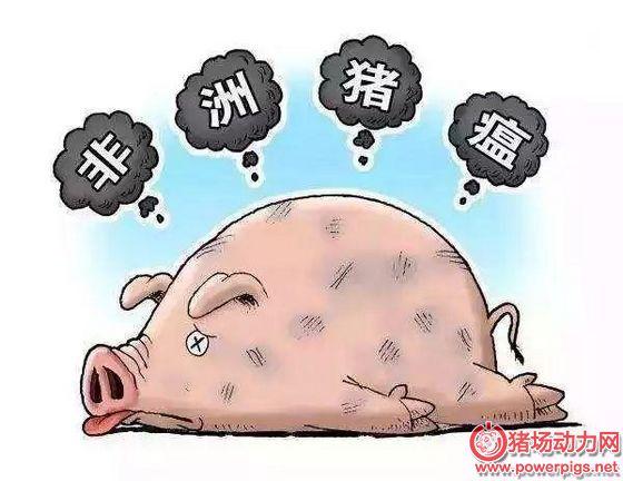 如何传播?非洲猪瘟传向全球和来到中国