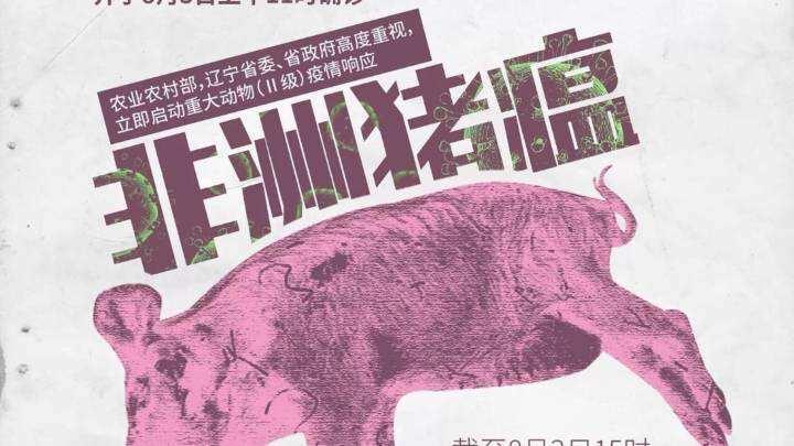 OIE副总干事:中国在未来许多年都需要应对非洲猪瘟