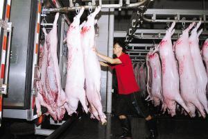 9月起珠海全市实行生猪肉品统一冷链配送,推至全国还会远吗?