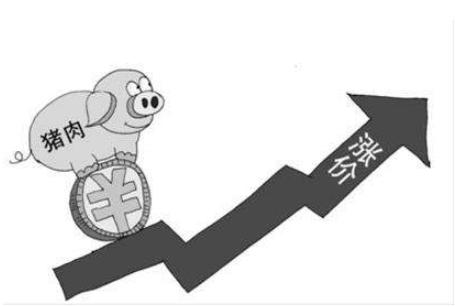 """下半年价补联动""""防猪价"""" 29省份已发临时补贴超20亿"""