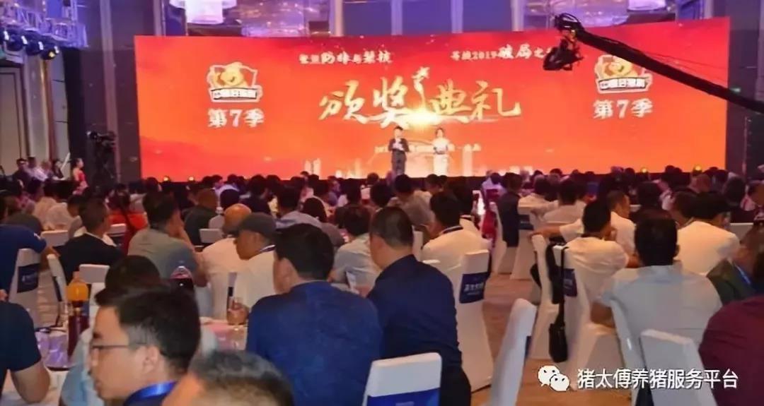 """中国首创—猪太傅高产能母猪料配方师荣获""""优秀动物营养师""""殊荣"""