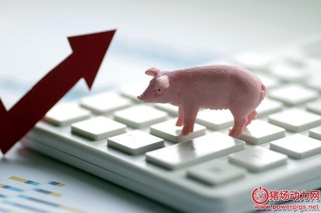 青海省出台新政支持生猪产业发展